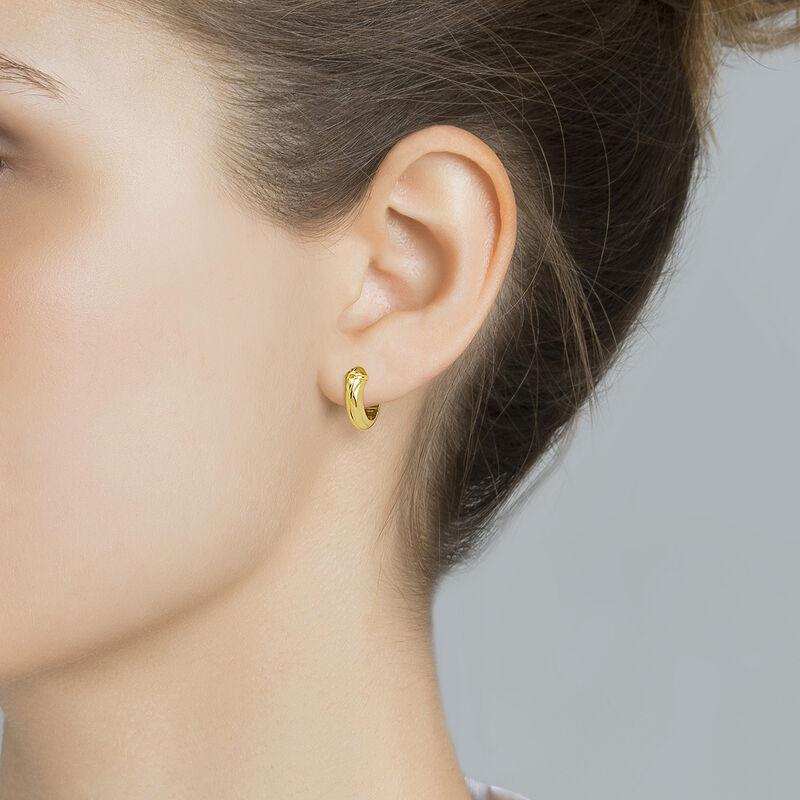 Gold plated fantasy motifs hoop earrings, J04559-02, hi-res